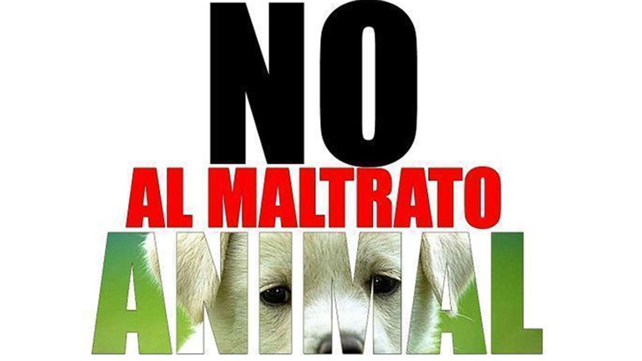 .Campaña contra el maltrato animal