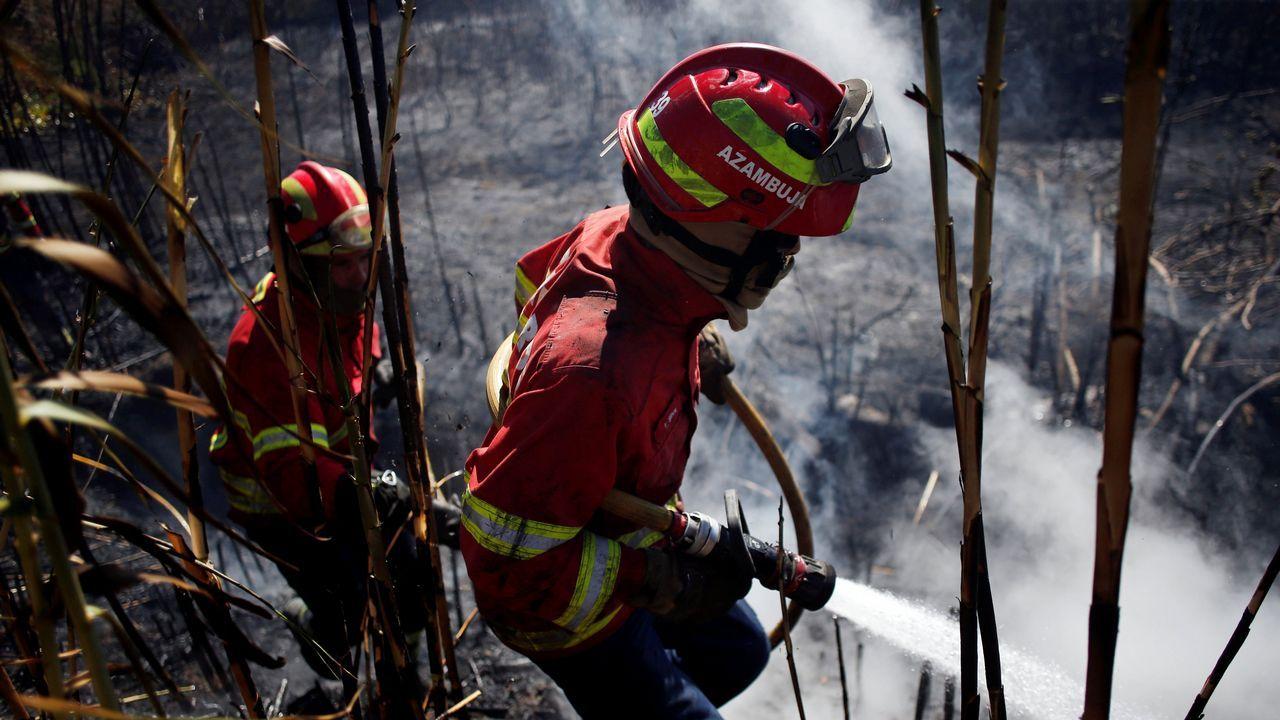 Sintra, cercada por el fuego.Índice de riesgo de incendios forestales de Asturias