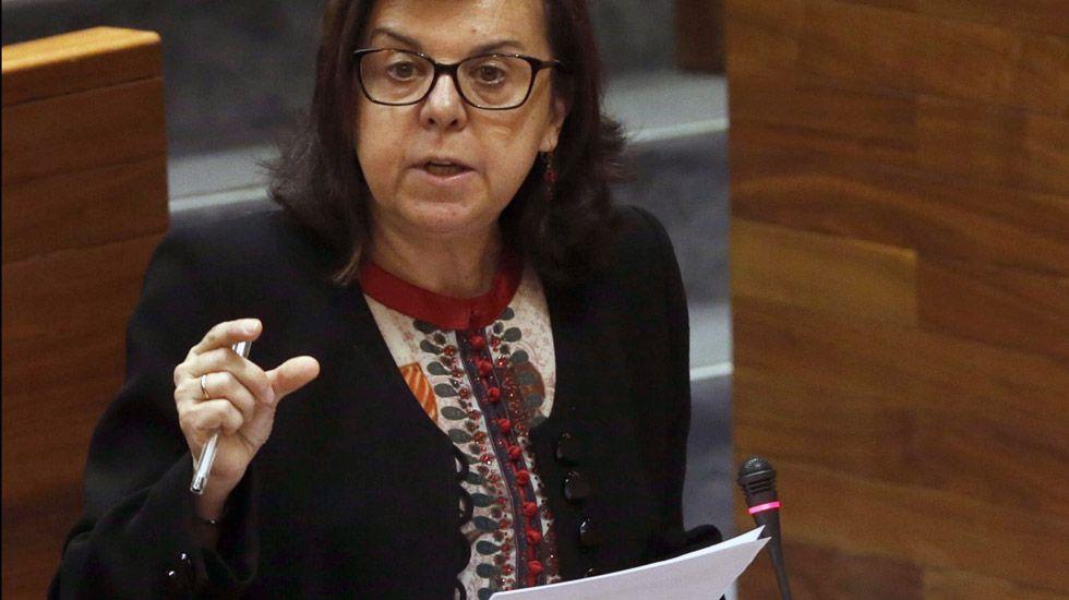 La consejera de Desarrollo Rural y Recursos Naturales, María Jesús Álvarez. La consejera de Desarrollo Rural y Recursos Naturales, María Jesús Álvarez