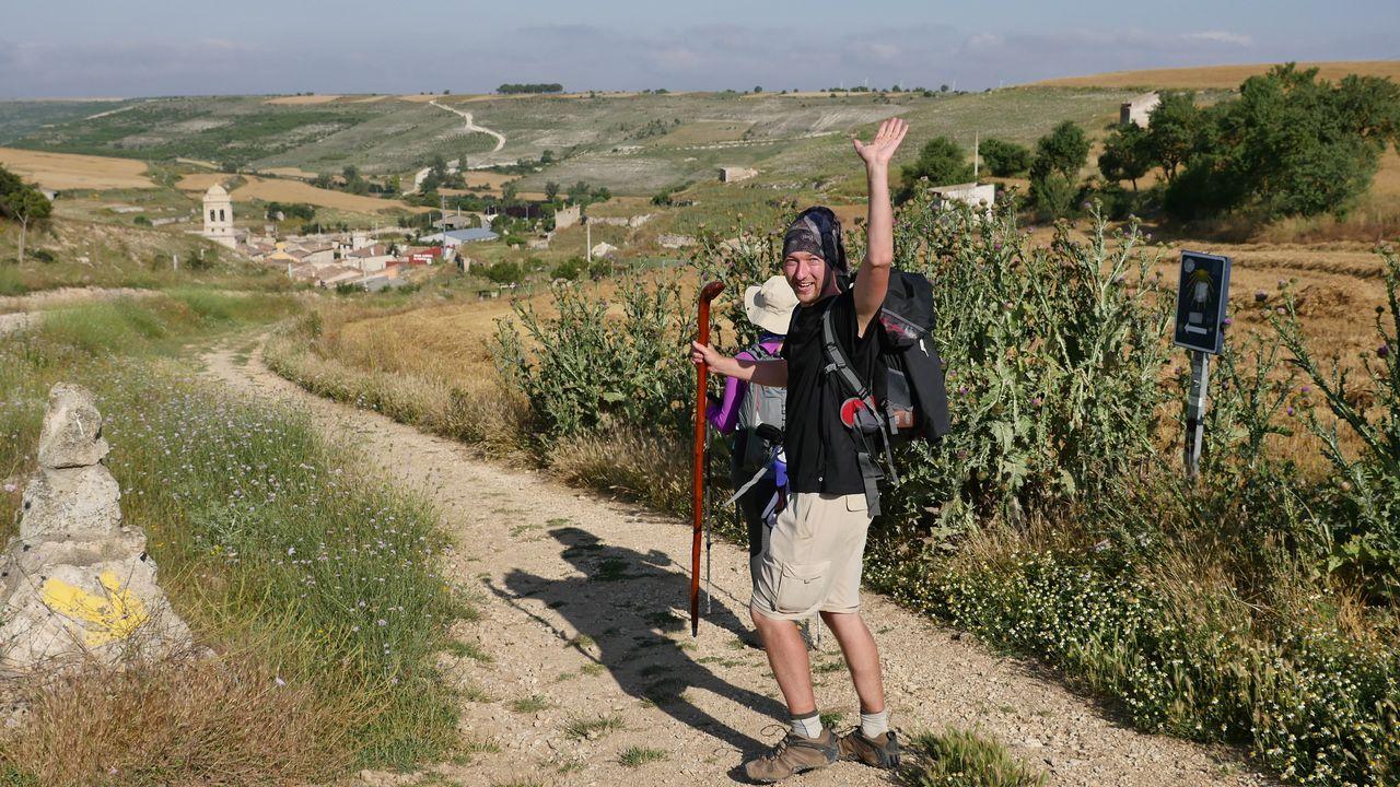Todas las flechas llevan a Santiago.Una estampa de la ruta francesa entre girasoles, cerca de Poblado del Camino. Una etapa llana, pero con mucho viento