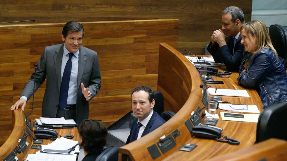 Javier Fernández interviene en el pleno de la Junta General.Javier Fernández interviene en el pleno de la Junta General