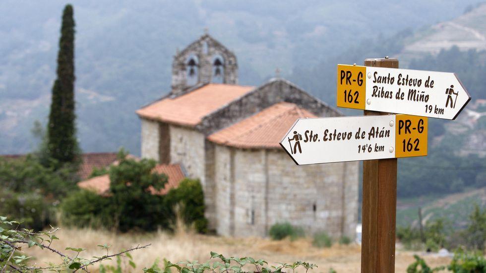 Visita visual a las Penas de Matacás y la Casa Antiga.Las ayudas son para plantación de viñedo