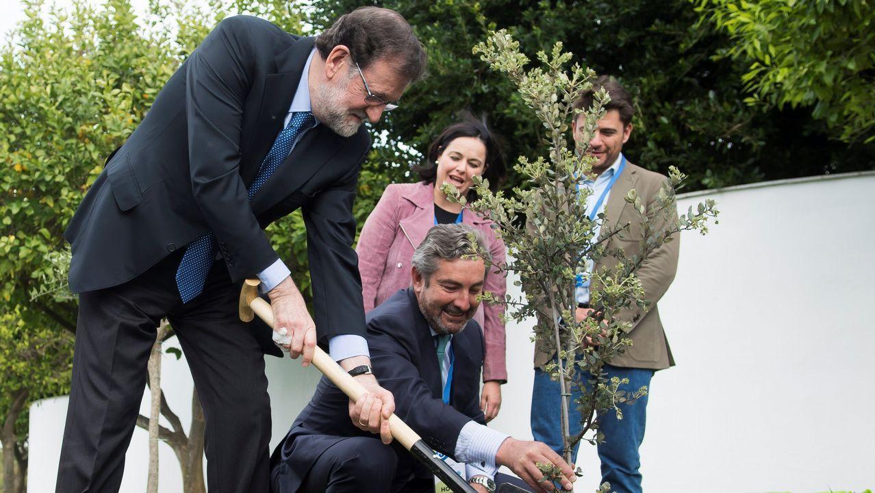 La convención del PP, en dos minutos: entre el intento de buen rollo y el protagonismo de Cifuentes.Rajoy plantó, en el jardín del hotel que acoge la convención, una encina. Un árbol «muy duro, bonito y español»