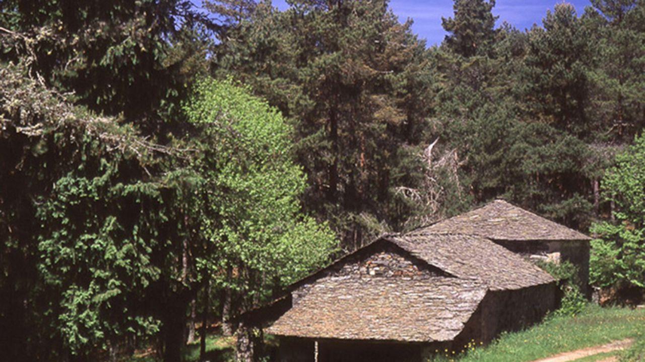Un trama de la etapa del Camino de Santiago entre Pola de Allande y Berducedo