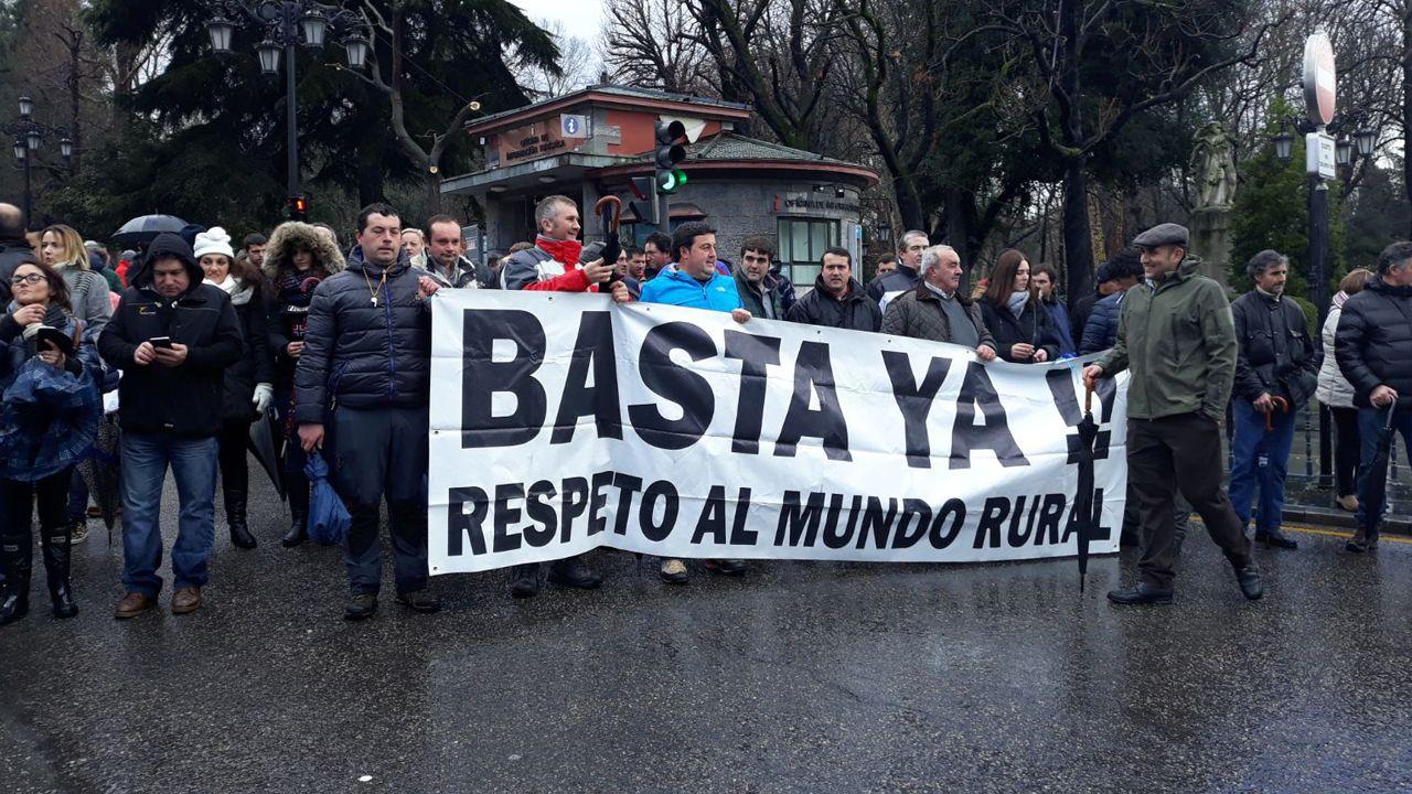 Los ganaderos asturianos se concentran en Oviedo.Los restos de uralita hallados en unos terrenos en Ceares