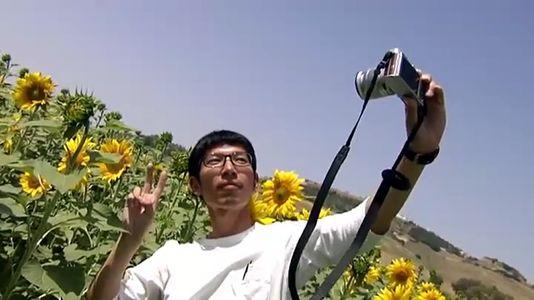 Invasión nipona para hacerse una foto con los girasoles de Carmona