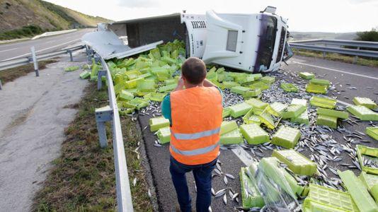 Caos en la A-8 al volcar un camión lleno de sardinas