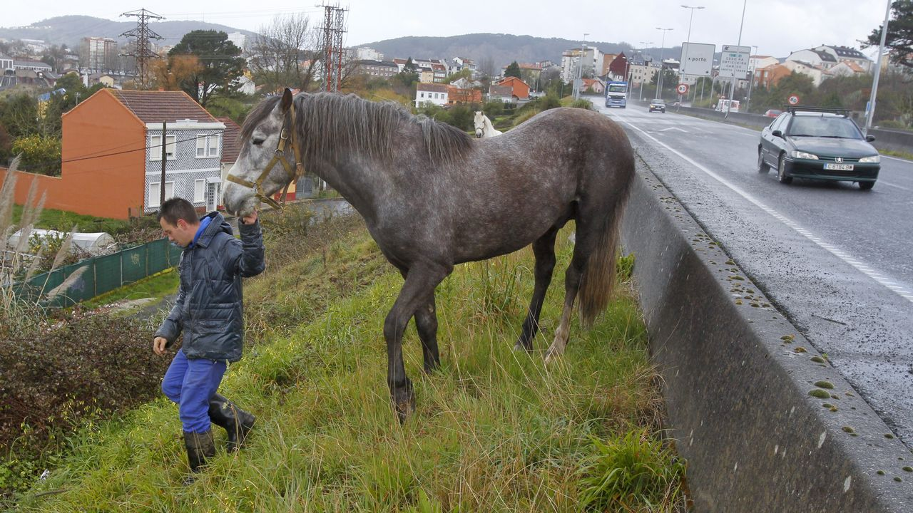 Simulador de accidentes. IES Leixa (Ferrol).La primera intervención es garantizar la estabilidad y seguridad del cuello del herido