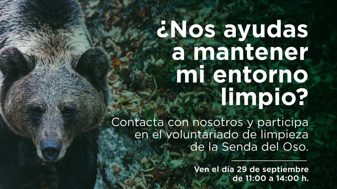 Taller de costurade Mar de Niebla, fundación de dinamización cultural de La Calzada, en Gijón.FOA organiza una actividad para limpiar la senda del oso