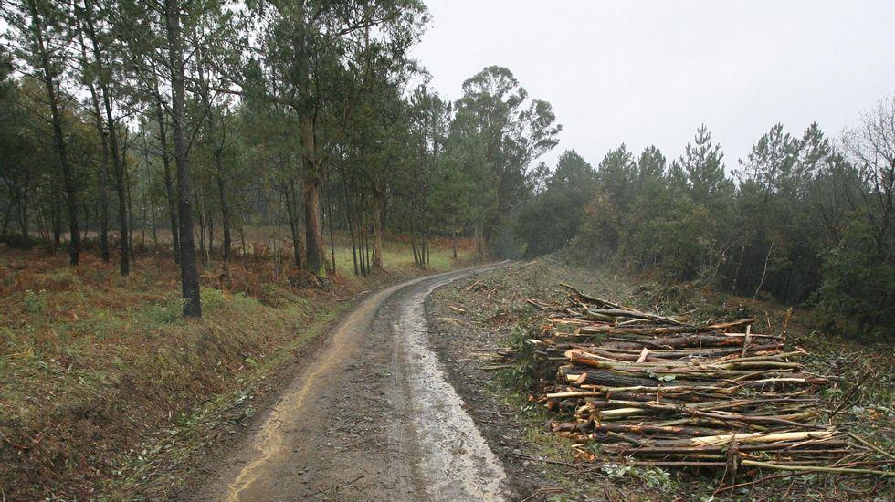 Emplazamiento de los restos del Hospital de San Gabriel, en Frontoi de Vilabade, en Castroverde.
