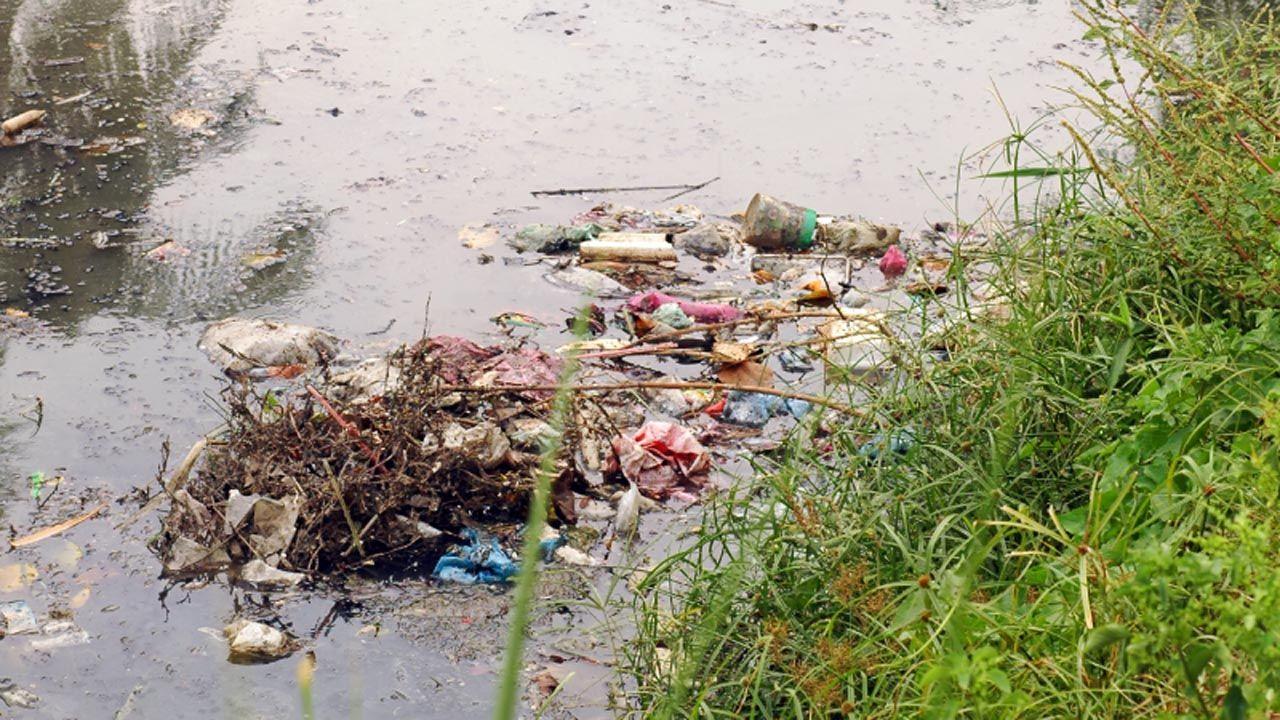Un río contaminado por los residuos que se tiran al WC