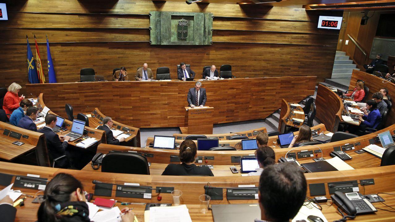 Un pleno en la Junta General del Principado