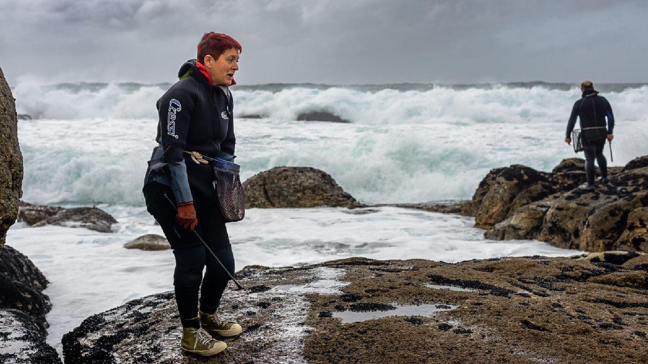 Comienza la retirada de la ballena varada en la playa de Balarés