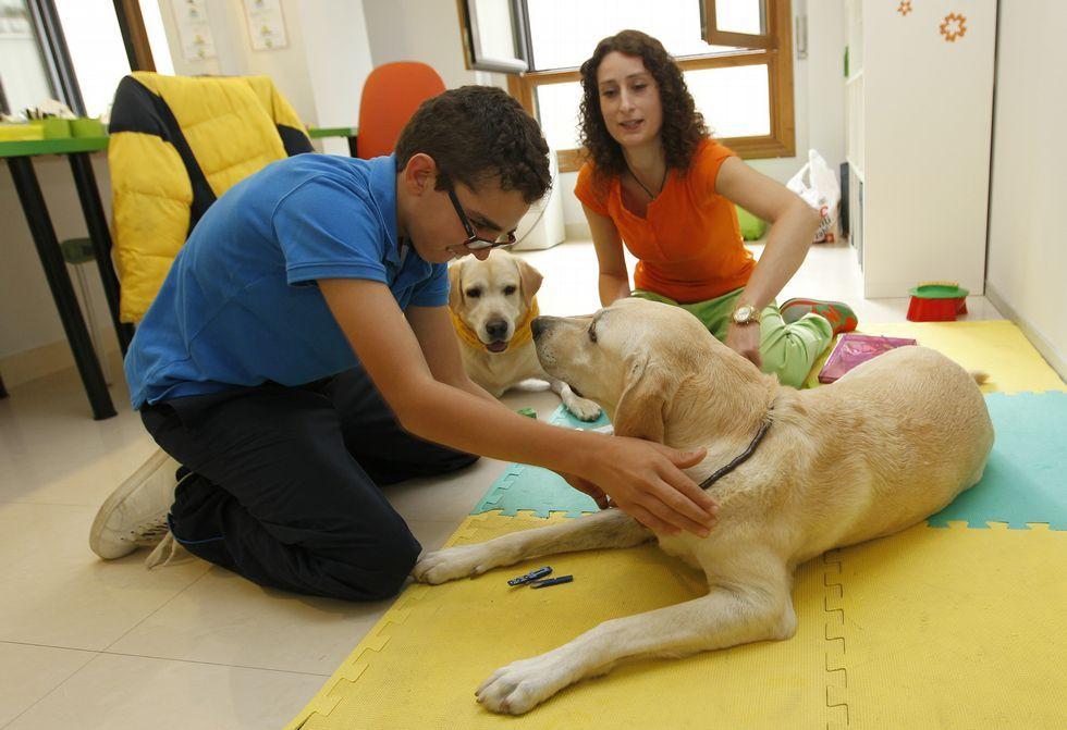 Bianca González, en una sesión de terapia con los canes y con Brais, un joven paciente.