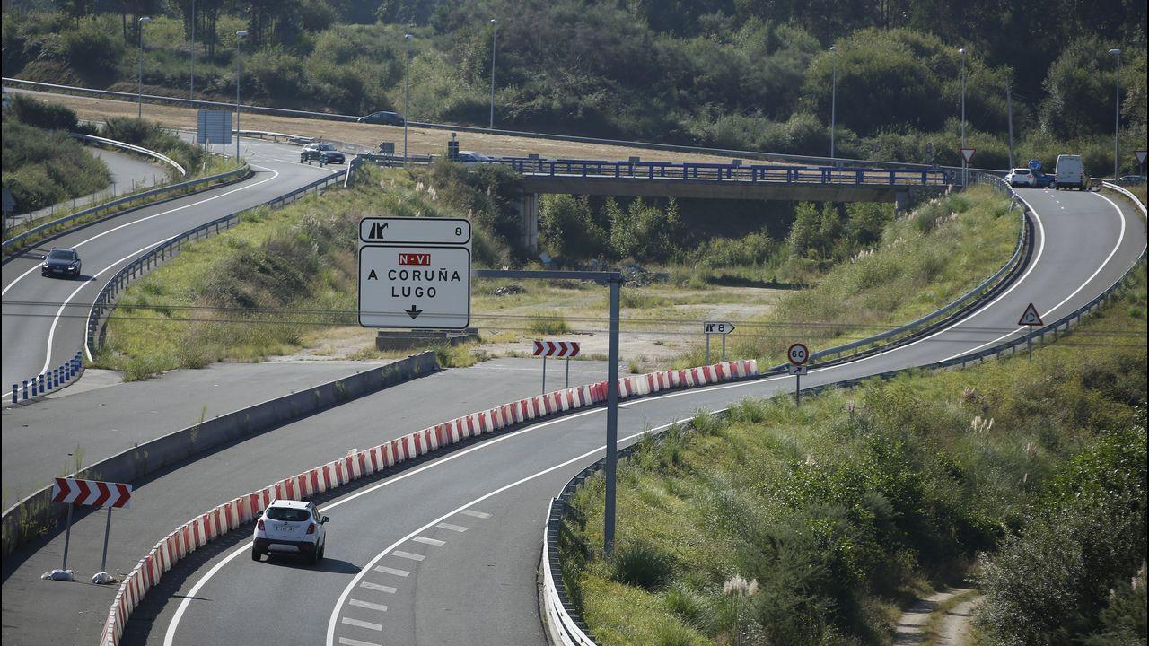 Jabalíes acampan en una rotonda de Lugo.La conexión de la vía Ártabra con la N-VI está ya prácticamente terminada.