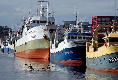Cefalopoderos atracados en el puerto de Marín durante una parada biológica.