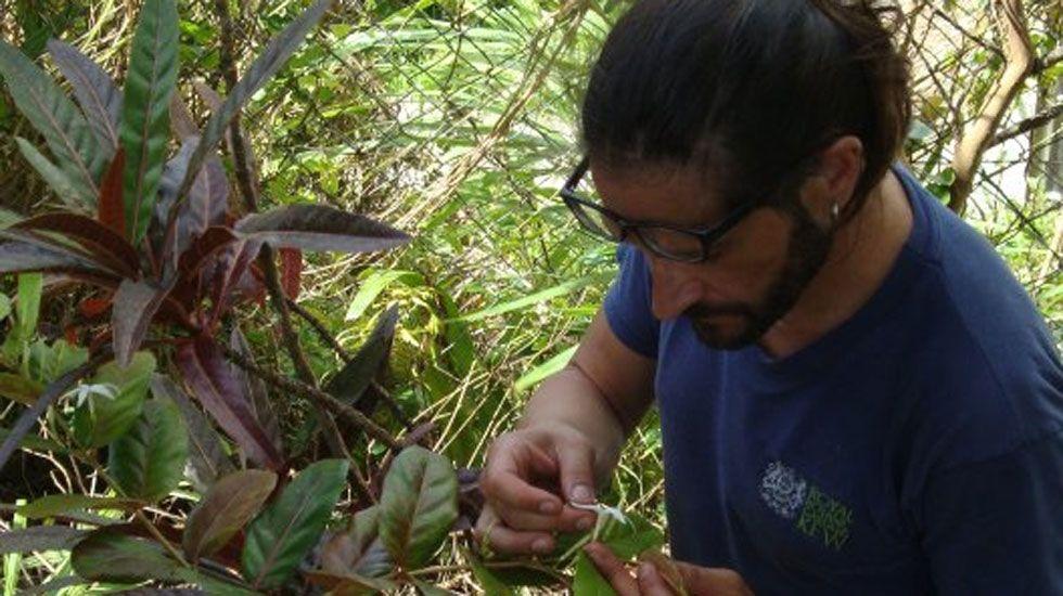 Juicio por el desahucio de Victoria y su familia.Carlos Magdalena, examinando un ejemplar de planta en Isla Mauricio