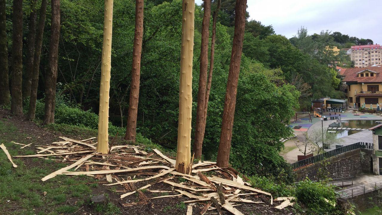 Figuras del bosque encantado de A Granxa de Briz.