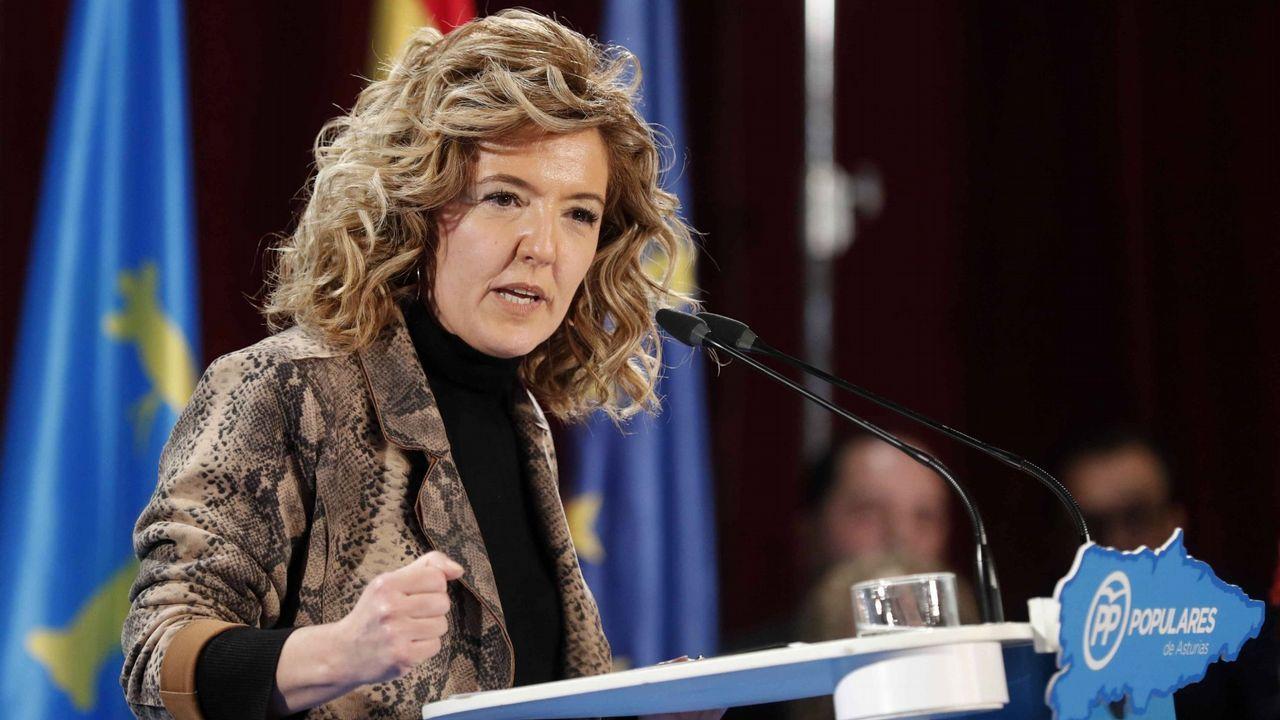 candidatos.Teresa Mallada. Asturias. Aupada desde Madrid sobre la presidenta del PP regional en busca de un acercamiento a Foro Asturias, de A. Cascos.