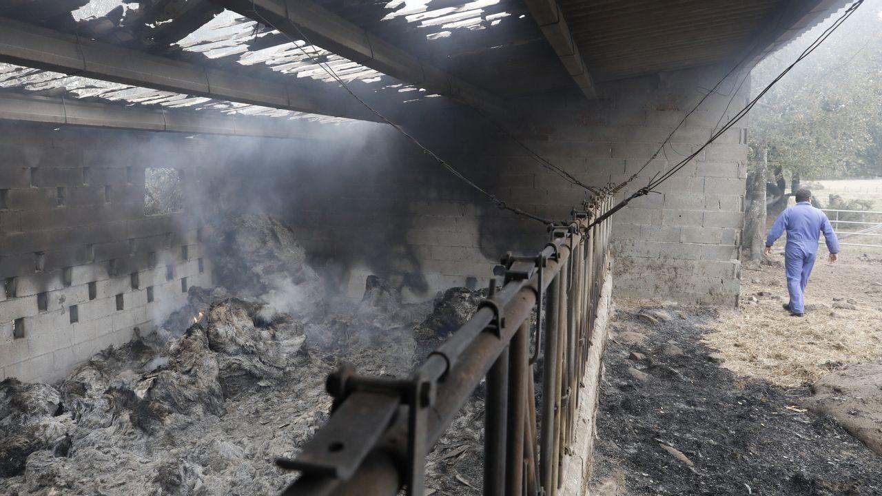 Un establo totalmente destrozado por un incendio en Trasmonte (Friol)
