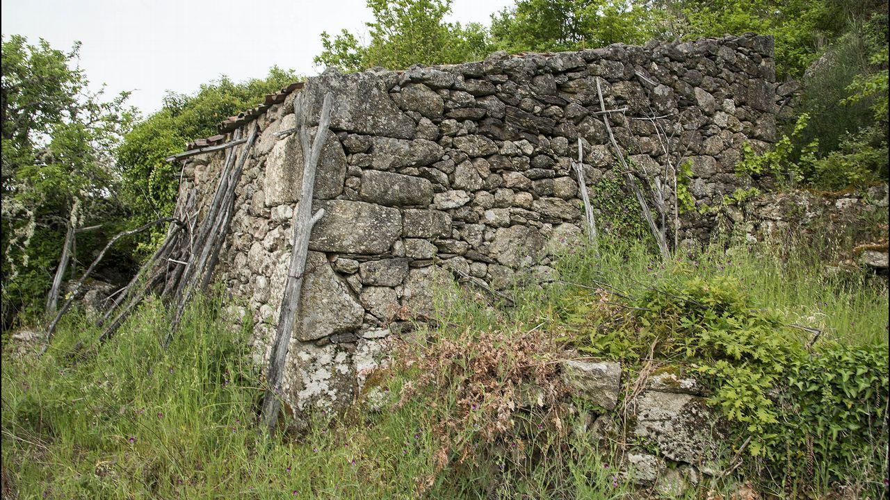 Una antigua bodega en San Mamede