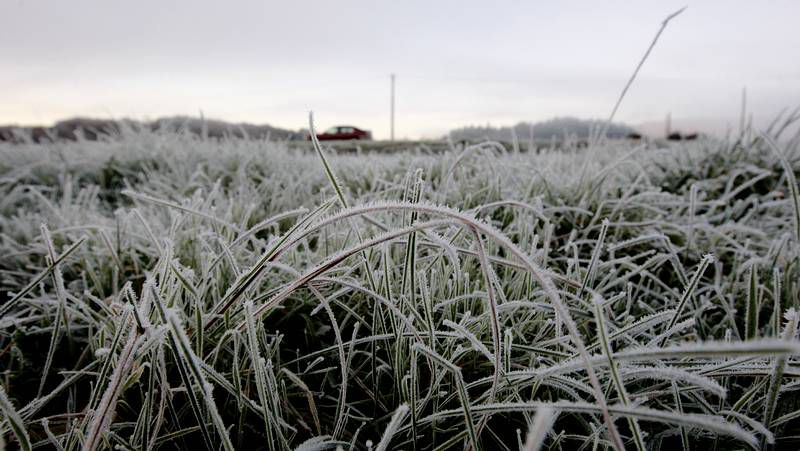 Monforte, cubierta de hielo el 30 de diciembre (pero del año pasado).Tras la helada del lunes, ayer hubo un sol espléndido.