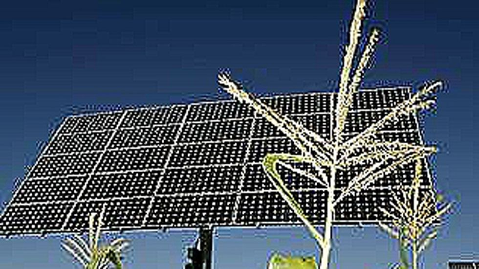 .Panel solar en medio de un campo de maíz