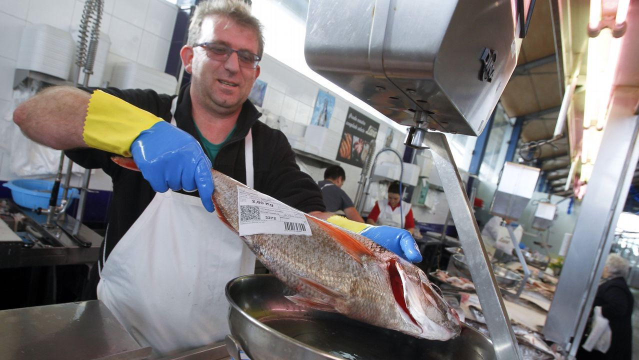 La pesca del Pesca 1 en la costa de Vigo.Isasaweis en la campaña #MaresParaSiempre