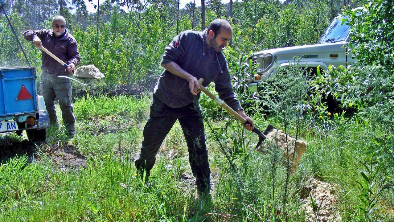 Miembros del tecor de Ribadeo echan cereales en los comederos