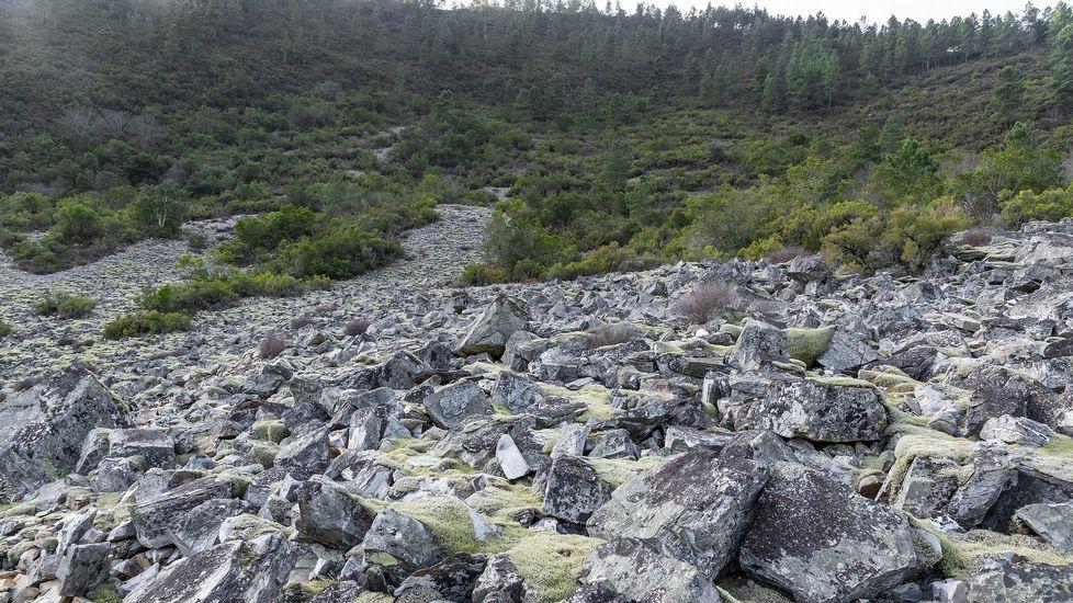 Otro aspecto del pedregal, una huella de los glaciares del Pleistoceno