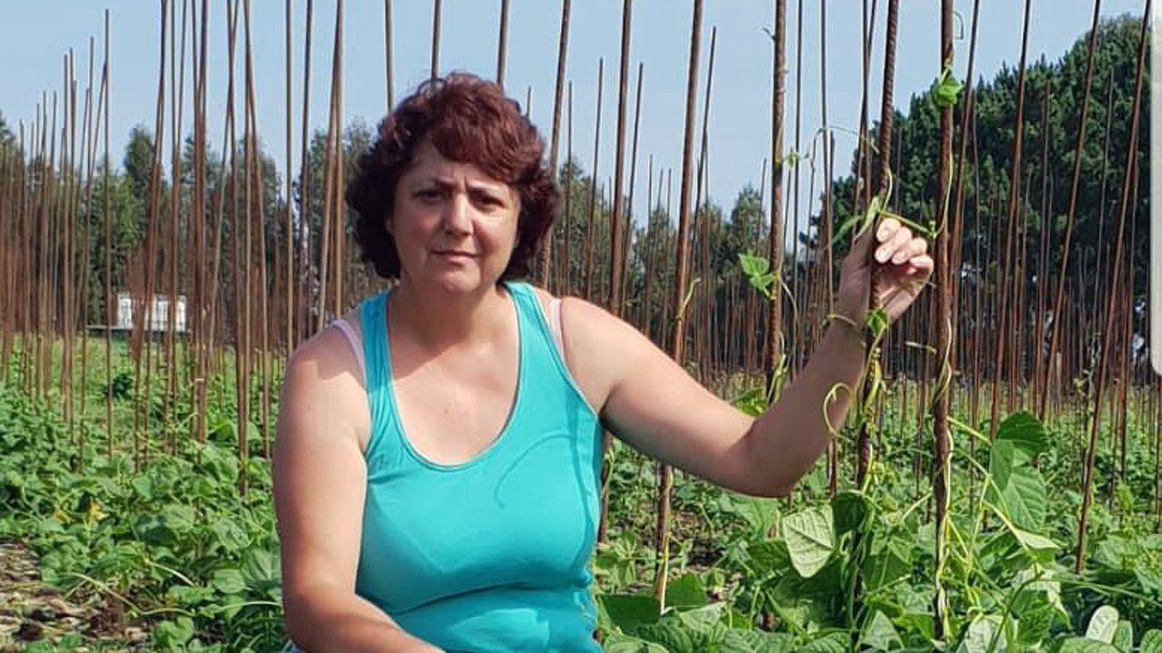 .María José Valdés, presidenta de la Asociación de Productores Profesionales de Faba Asturiana, muestra su plantación