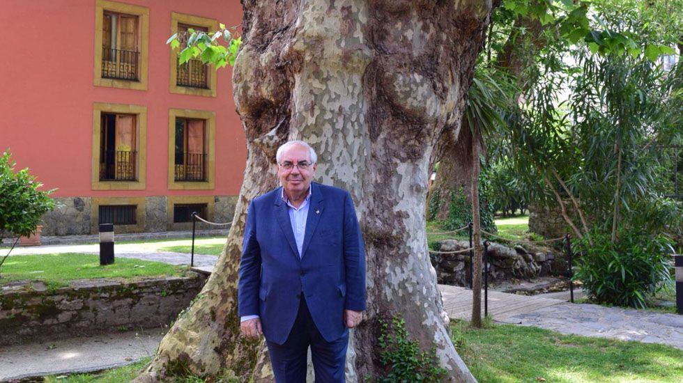 .Vicente Álvarez Areces