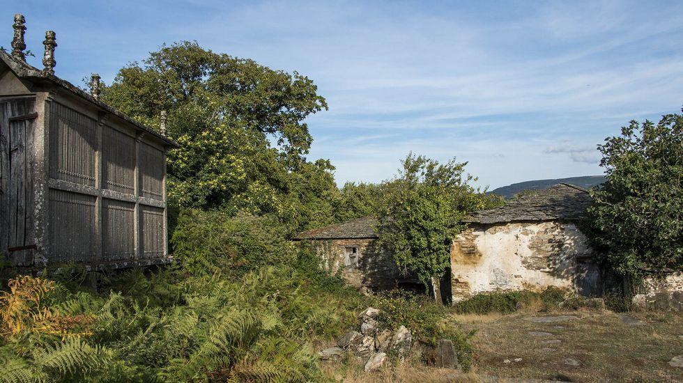 .La abandonada Casa de Saavedra fue una importante vivienda señorial