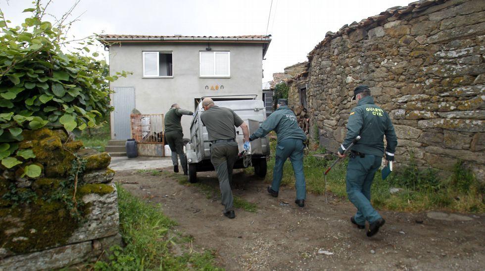 La policía confirma que el cuerpo recuperado en el Miño es el de Emilio Pintor.Los agentes de Medio Ambiente y el Seprona acercan el remolque al perro antes de capturarlo
