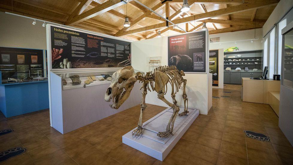 Museo geológico de Quiroga. Entre el jueves y el sábado de esta semana abrirá de 11.30 a 13.30 y de 17.00 a 20.00 horas. El domingo abrirá de 11.30 a 13.30 y de 17.00 a 19.00