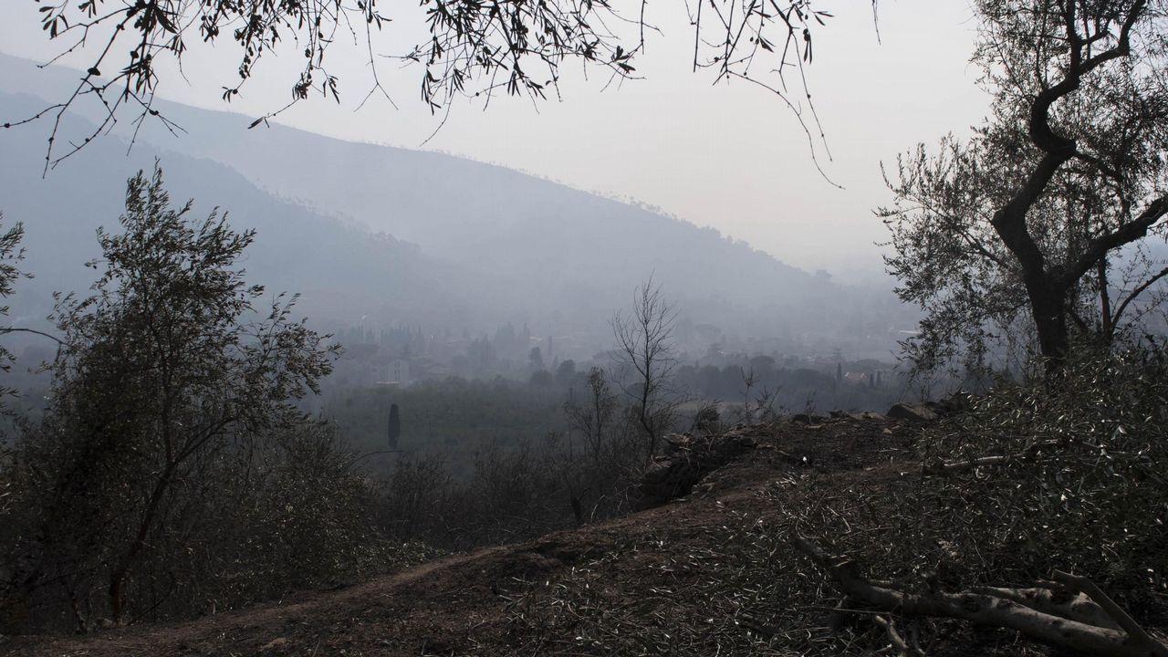 Vista de una colina devastada por el fuego en la localidad de Calci