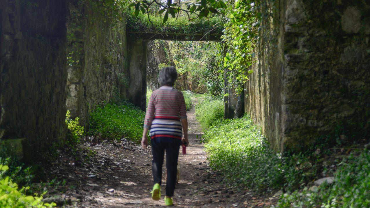 Dieta ártabra o cómo perder 100.000 kilos en dos años