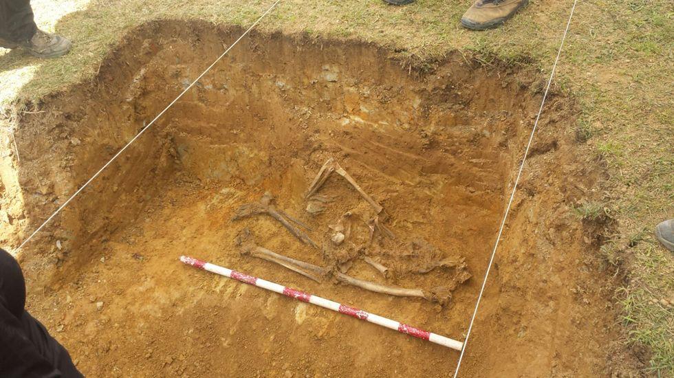 Excavaciones en Bañugues.Ejemplar de urogallo macho en Benasque