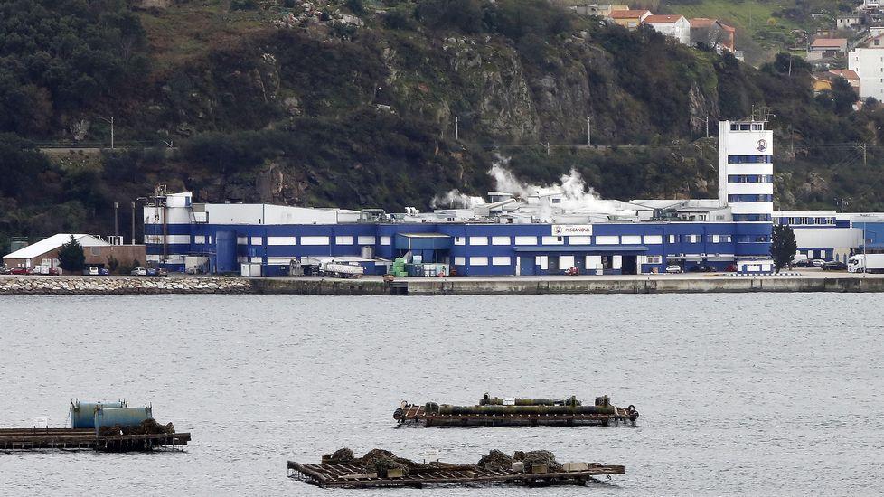 Establecimiento de venta directa de productos Pescanova en la sede del grupo, en Chapela.