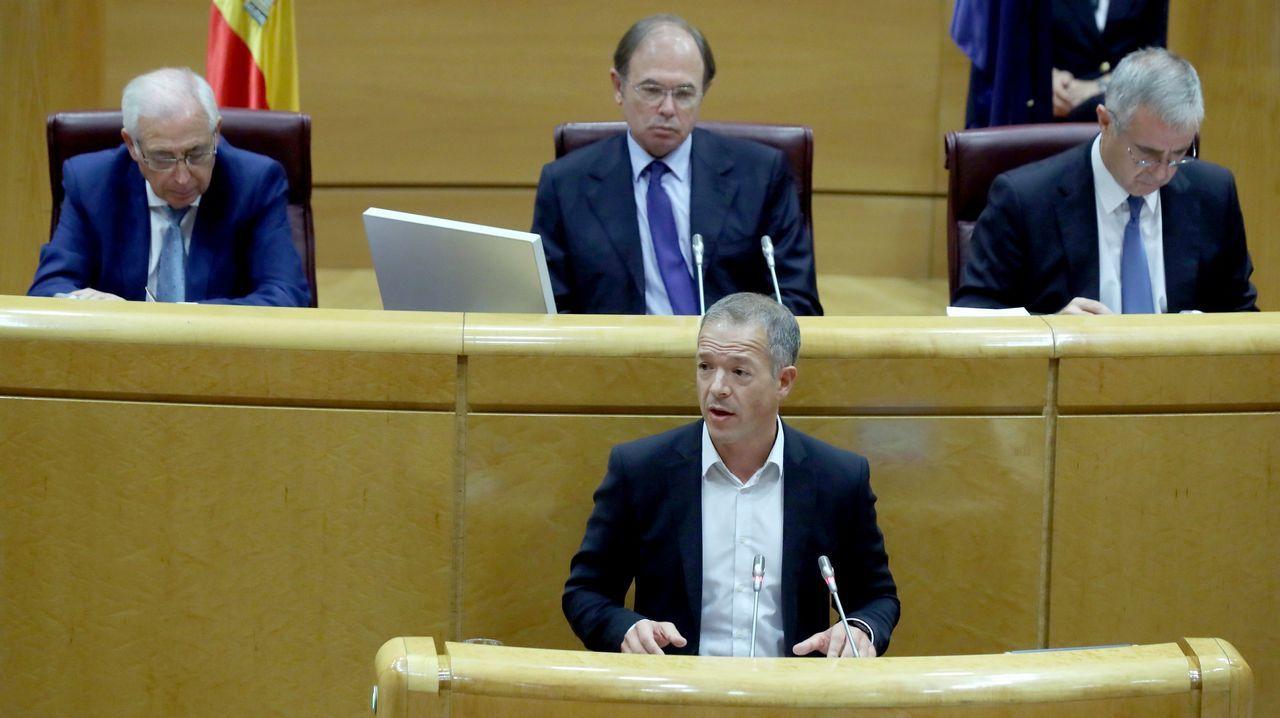 .El senador del PSOE Ander Gil