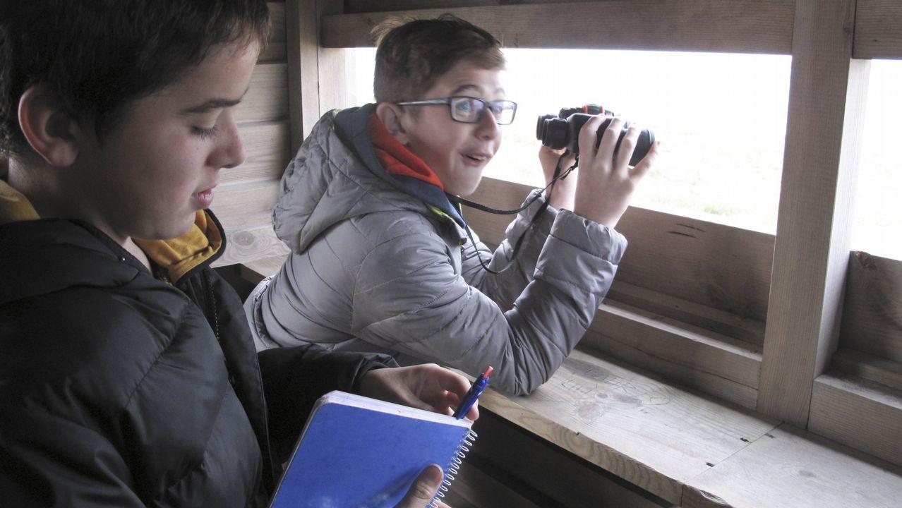 Vecinos de la Costa da Tapia quieren irse a Oleiros.En moitos dos máis importantes humidais de Galicia construíronse sinxelos miradoiros ornitolóxicos desde os que é doado observar aves acuáticas