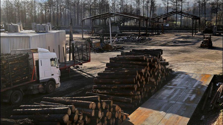 Galiza, incendios: La Xunta admite que en As Fragas do Eume han ardido 750 hectáreas.  - Página 8 V29E8330