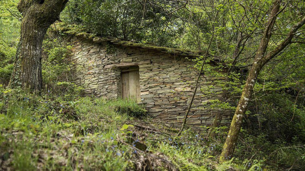 .Una antigua alvariza o colmenar tradicional que perteneció a la Casa do Bataneiro