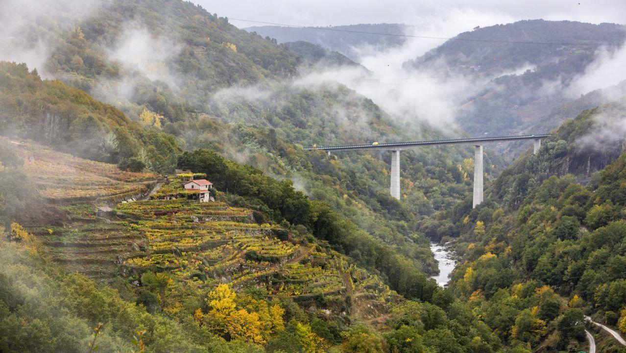 El otoño convierte la ribeira de Pesqueiras, en o Saviñao, en una imagen de postal
