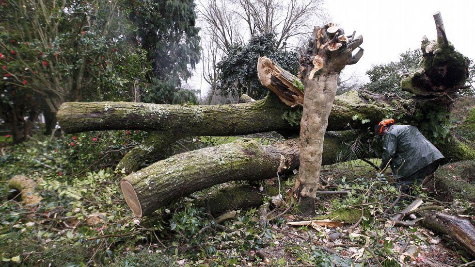 Los efectos del temporal en la Alameda de Santiago.Cartel derribado por el viento en O Mercuto (Ames)