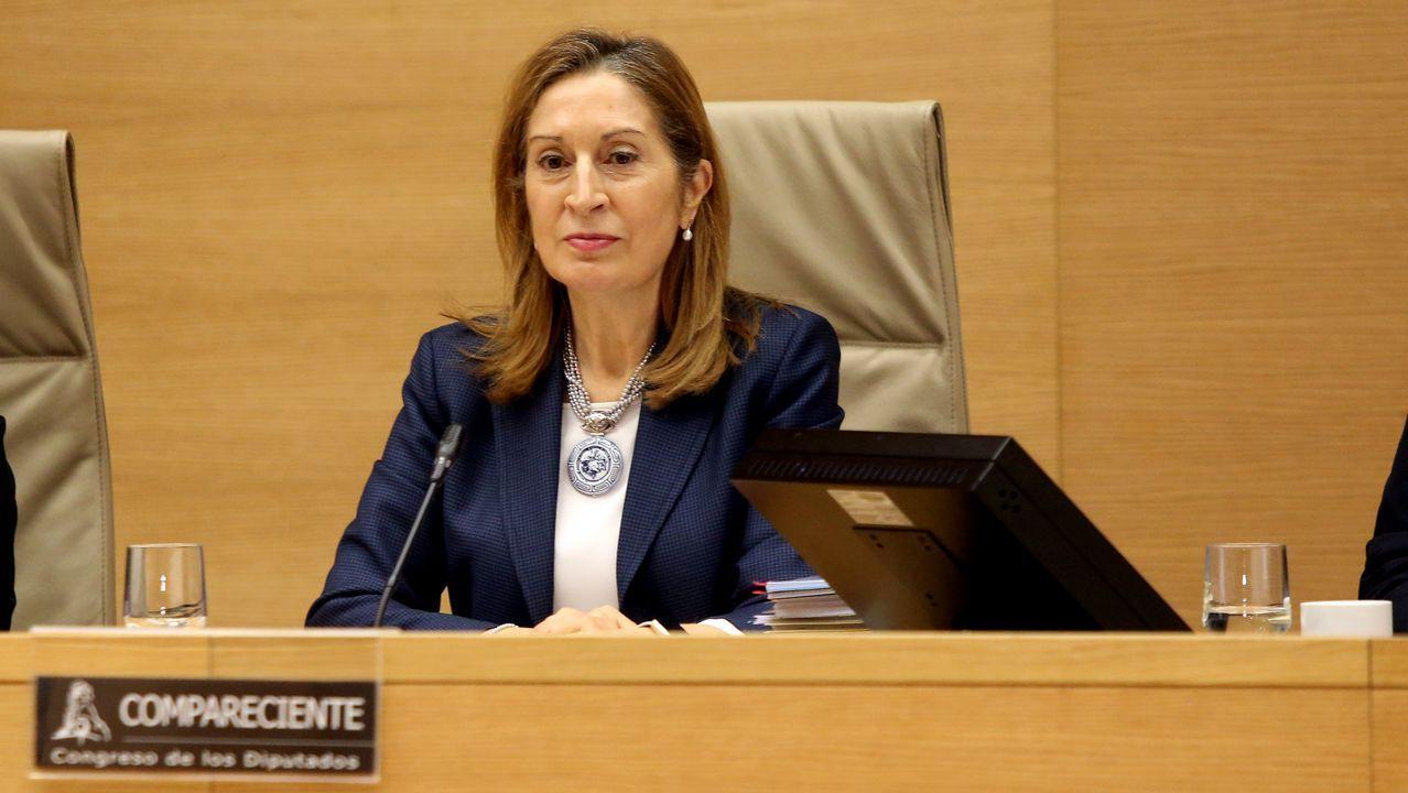 La conselleira Ethel Vázquez, durante su comparecencia parlamentaria