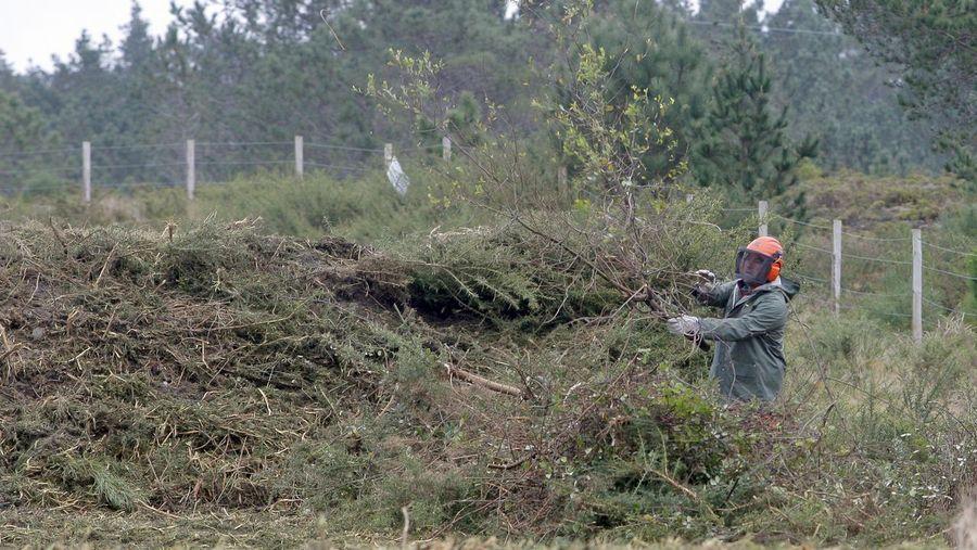 Galiza, incendios: La Xunta admite que en As Fragas do Eume han ardido 750 hectáreas.  - Página 8 B22E5065