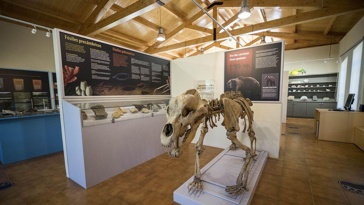 Visita en imágenes a un museo único en Galicia.