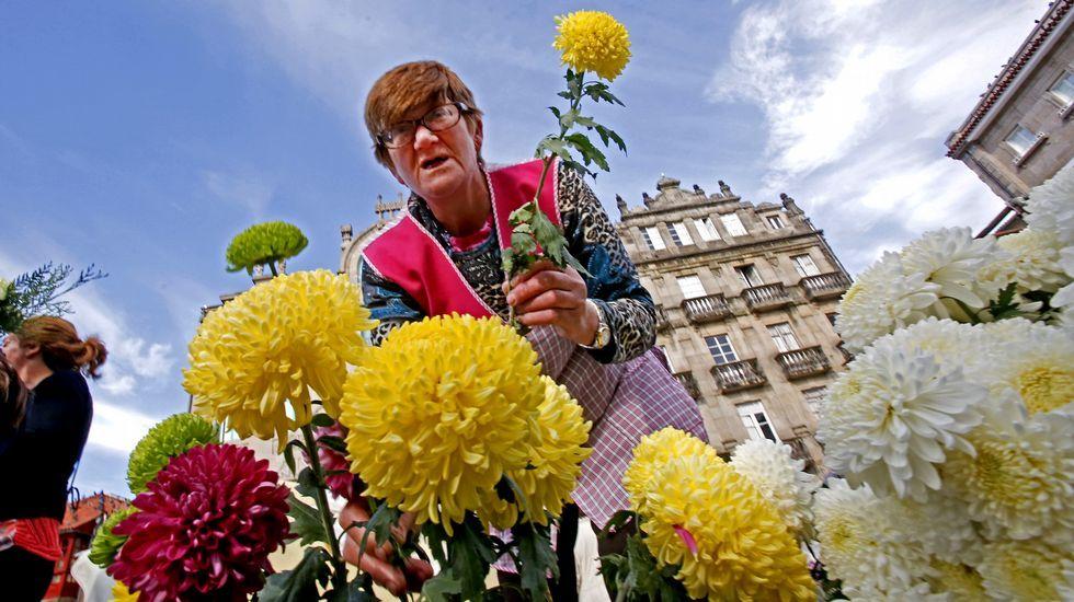 .Mercado de flores para Todos los Santos