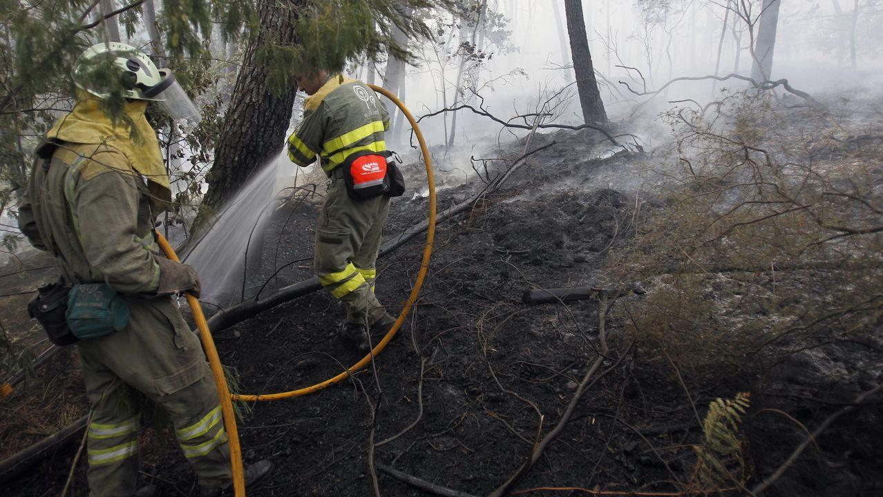 Cámaras de seguridad captan in fraganti a uno de los ladrones.Incendio forestal en la parroquia de Padróns (Ponteareas) en el 2015